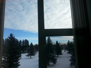 an image of trees and sky framed by a window